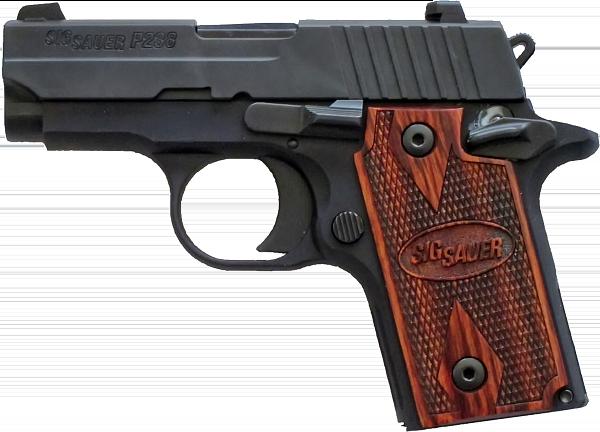 SIG-P238